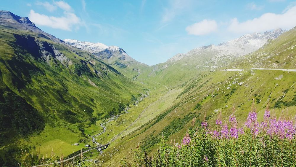 Furkapass Schwitzerland Cycling Nature Beauty In Nature Mountain Freshness Day Cloud - Sky Outdoors Landscape Grass No People Mountain Range Sky Flower