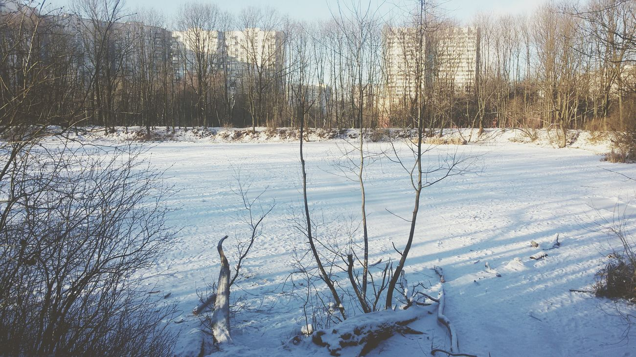 ясенево битцевский_парк Moscow Snow Ice Soviet Architecture