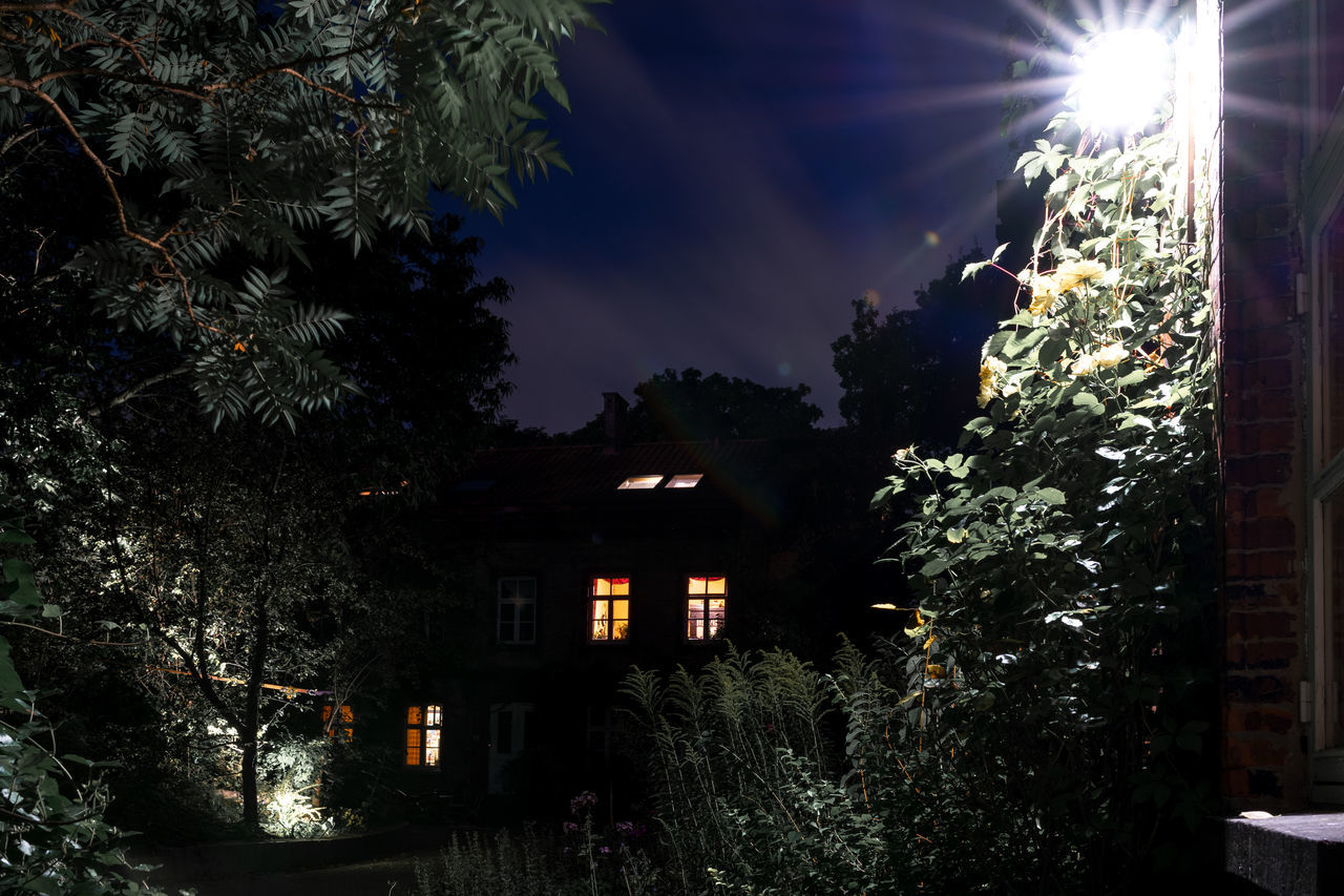 Feeling observed? Ancient Ancient Architecture Architecture Building Exterior Hamburg Illuminated Low Angle View Night Photography Night Shot NightShots Outline Tree Witch Witch House Witchhouse