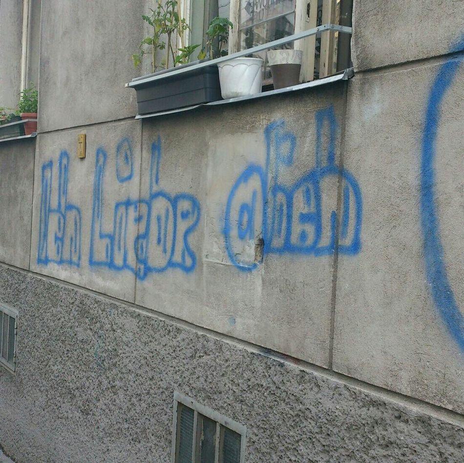 Mai 2014 Hausmauer Grafitti Beschriebene Hausmauer