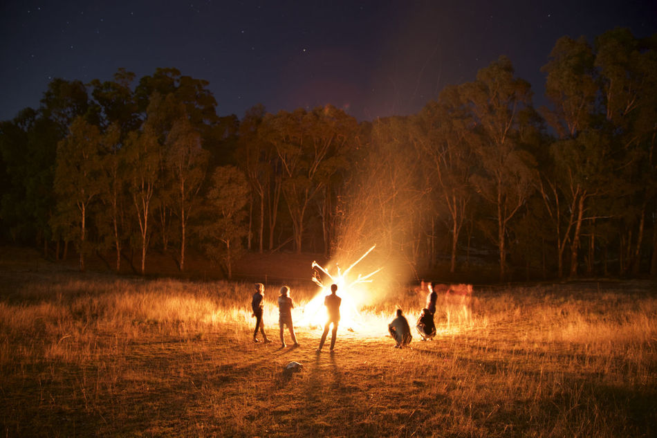 Beautiful stock photos of forest, Burning, Campfire, Camping, Escapism