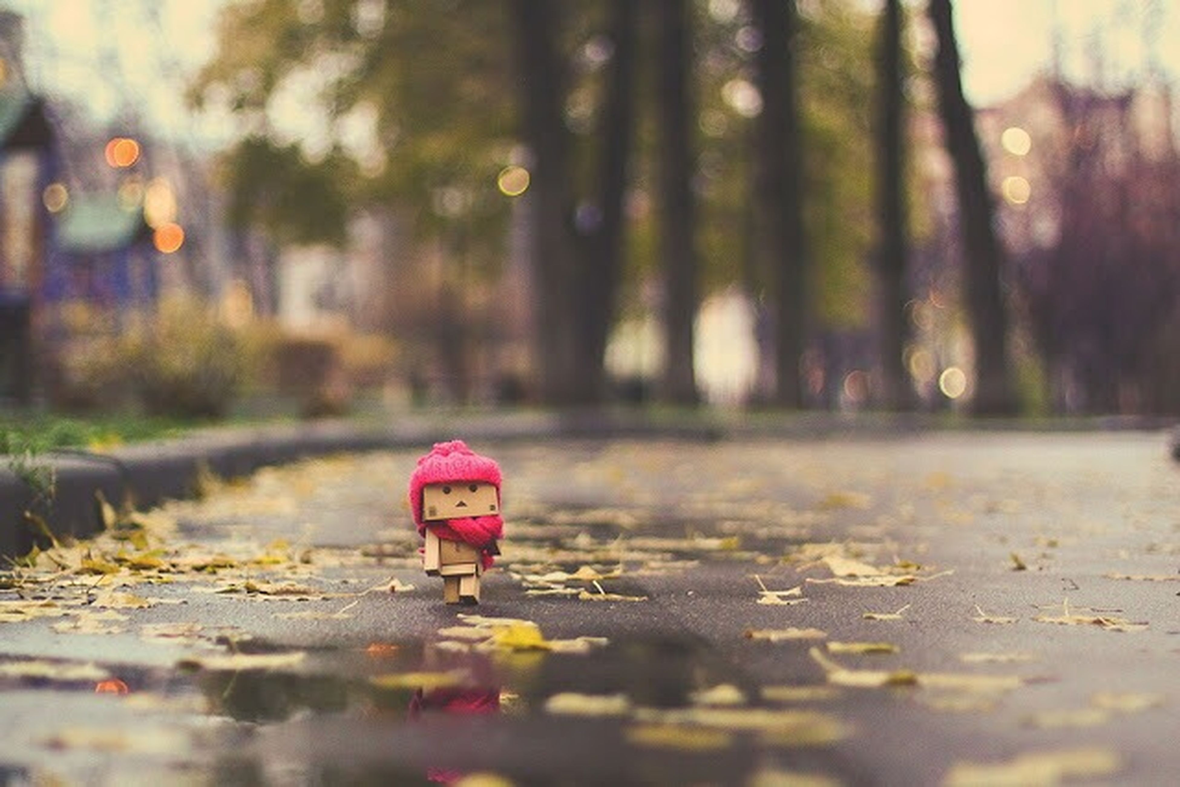 selective focus, red, focus on foreground, surface level, outdoors, lifestyles, day, walking, leisure activity, childhood, nature, standing, street, rear view, umbrella, tranquility, close-up, full length