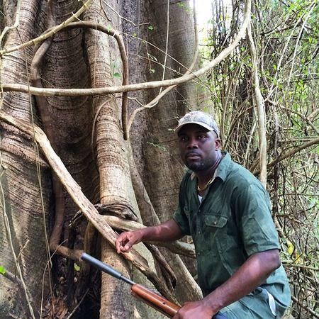 Bush Bushments Ourbestshots Outdoor Hunt Amazing_pics Adventure Grenada