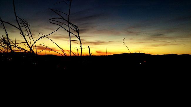 Sunset Sundown California Sunset Landscapes With WhiteWall