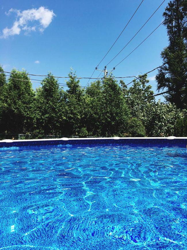 Pool Pool View Poolview Backyard Summer Summertime Trees Trees And Sky EyeEm Best Shots Eyemphotography EyeEm Gallery Blue Sky Bluewater