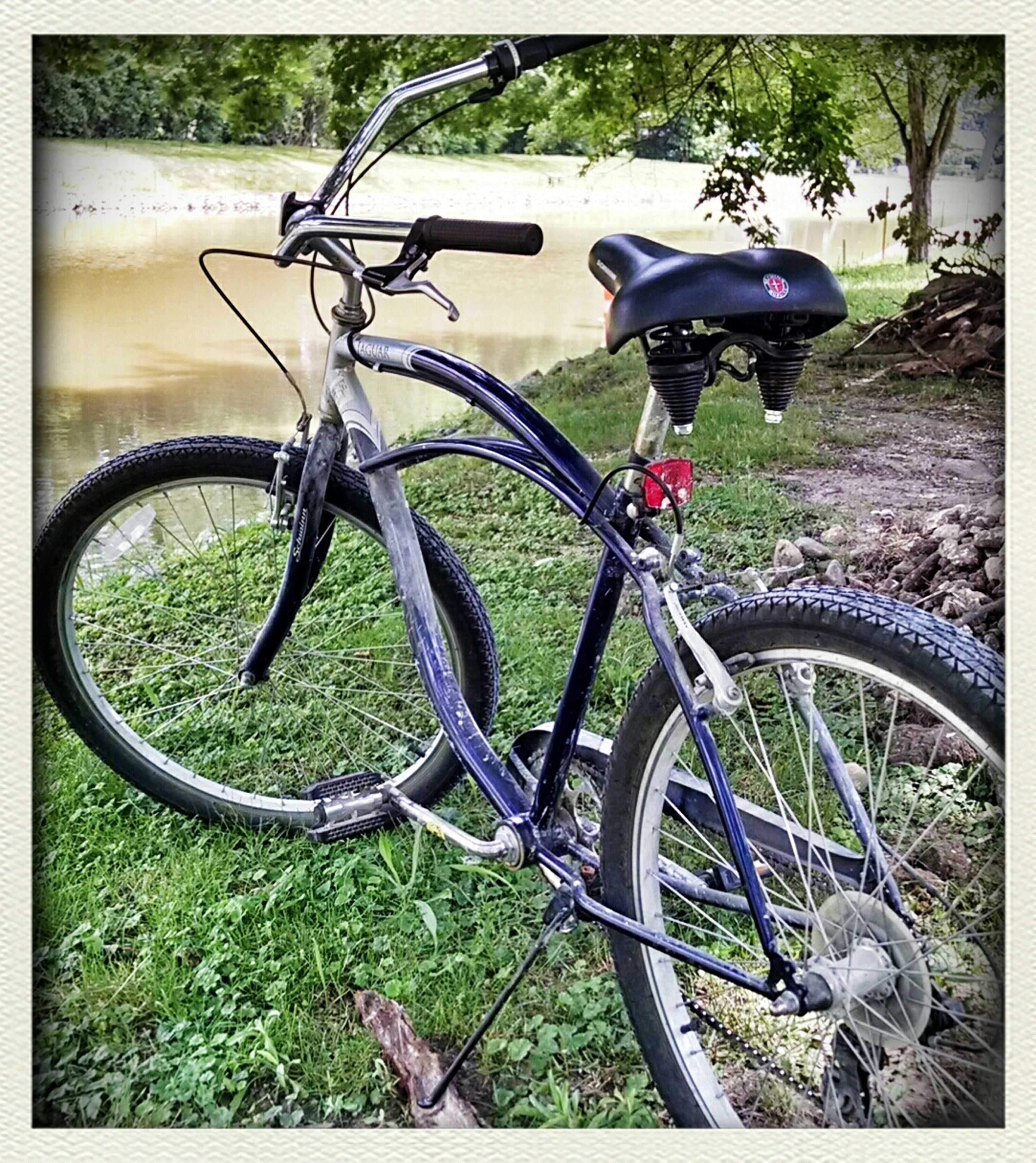bicycle, transportation, mode of transport, land vehicle, transfer print, stationary, parked, auto post production filter, parking, wheel, plant, day, sunlight, no people, outdoors, growth, metal, cycle, leaning, tree