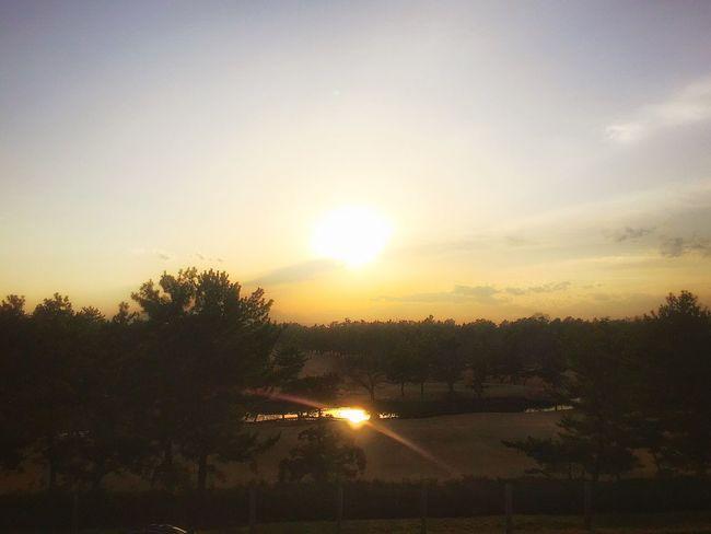 穏やかな夕陽を浴びて 楽しいひと時 Enjoying Life Beautiful Sunset Sunrise_sunsets_aroundworld Running Around Peace And Love Enjoying The Sun Myfavoriteplace Beautiful View Beautiful Day EyeEmBestPics EyeEm Best Shots IPhoneography Relaxing