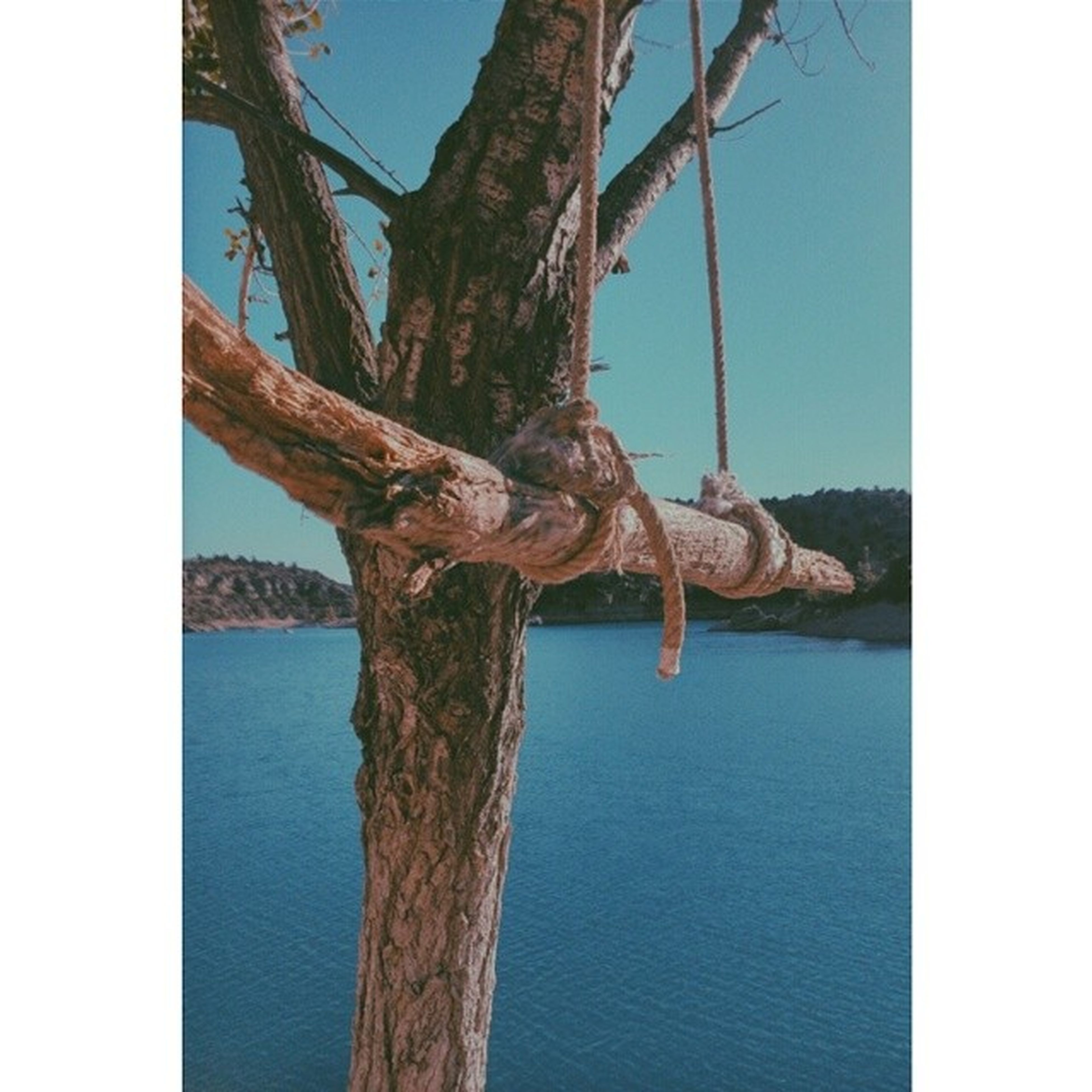 sea, transfer print, water, rope, blue, sky, wood - material, auto post production filter, tranquility, protection, day, horizon over water, nature, safety, outdoors, no people, pole, tree trunk, close-up, rusty