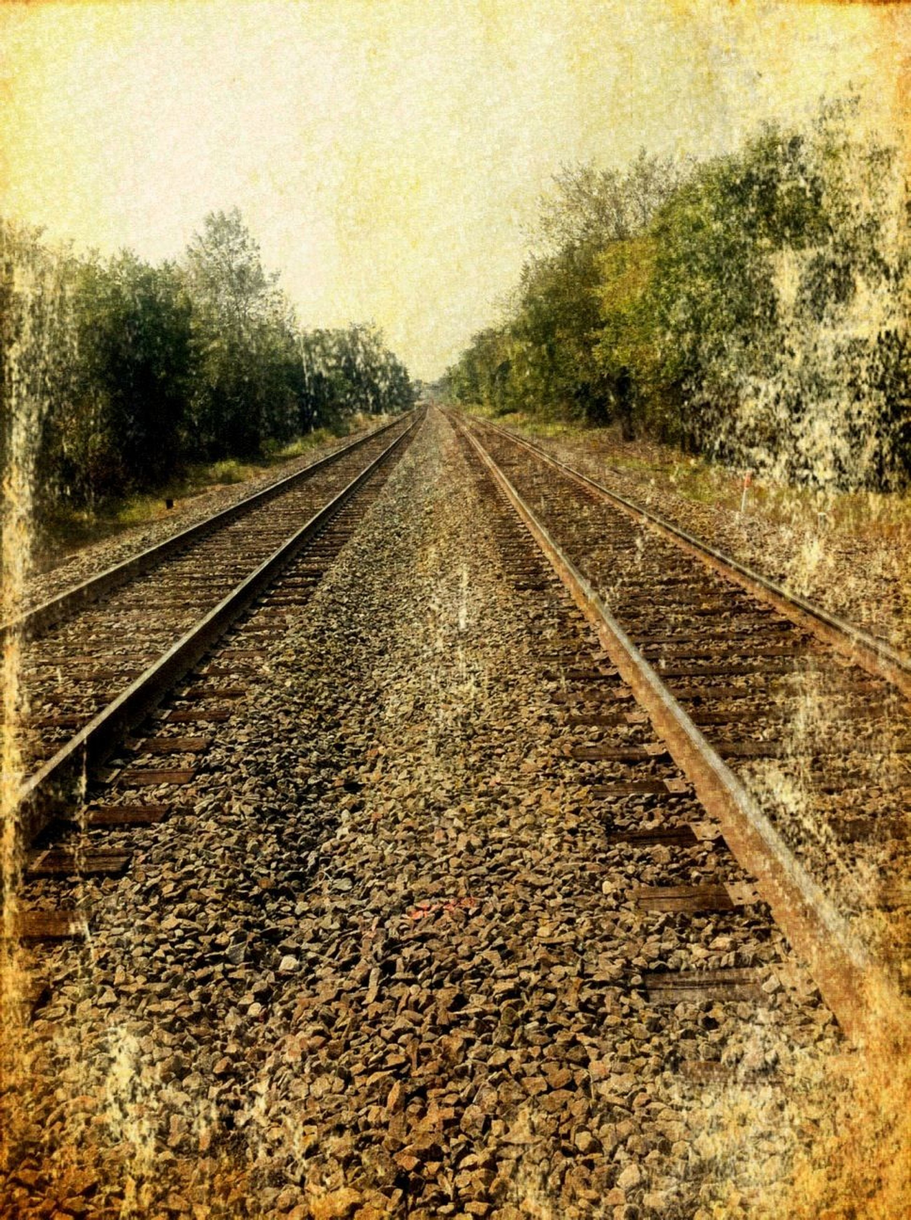 railroad track, the way forward, transportation, diminishing perspective, rail transportation, vanishing point, tree, railway track, sky, straight, day, auto post production filter, long, no people, outdoors, nature, surface level, tranquility, connection, metal