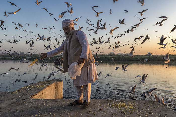 Life at Yamuna : An old man offer feed to birds. Culture Daily Life Delicious Documentary Documentary Photography EyeEm EyeEm Best Shots EyeEm Gallery Eyeem Photo EyeEmBestPics Nature Offering Outdoors People People Of India People Photography Ritual River River View Riverbank Riverside Sky The Photojournalist - 2017 EyeEm Awards Water Yamuna The Portraitist - 2017 EyeEm Awards