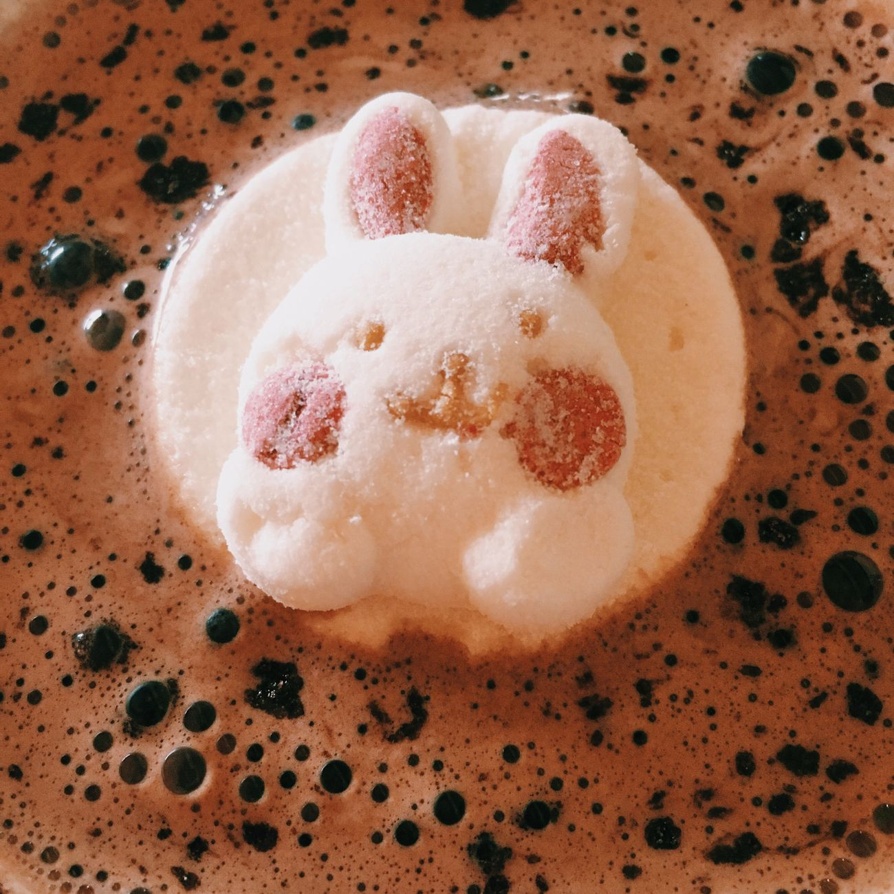 Cocoa Food And Drink Cocoa Powder Rabbit Rabbits Rabbit ❤️ Sweet Yummy