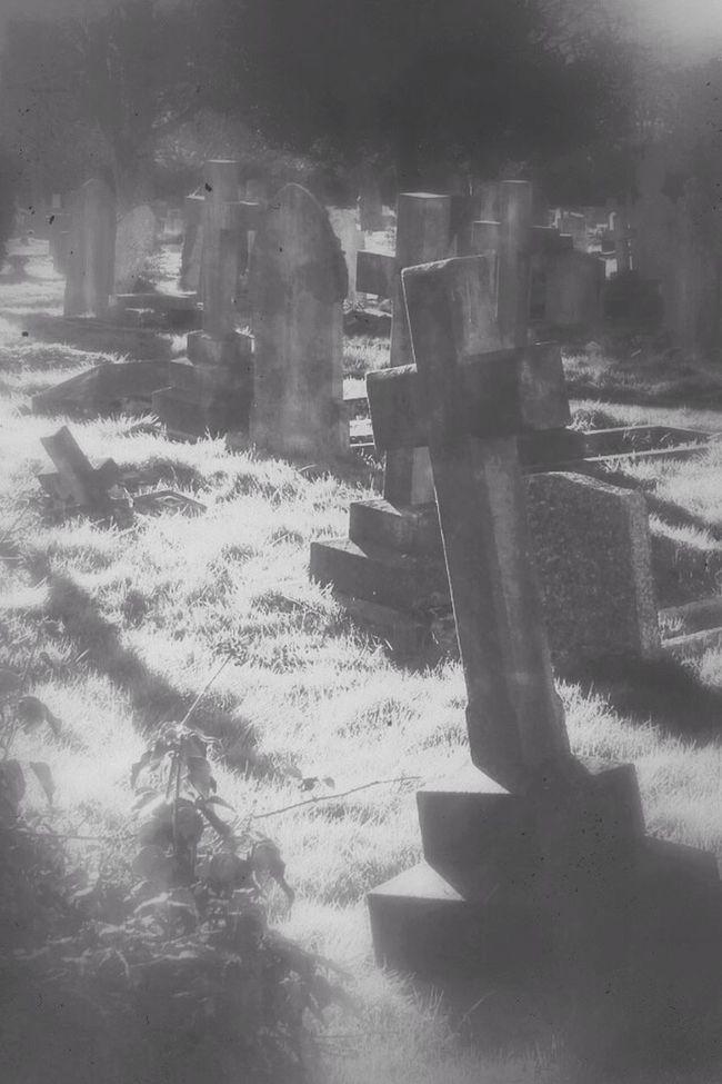 Black And Light Landscape Blancoynegro Graveyard Beauty Cemetery Darkart Dark Photography Photography Black&white Monochrome