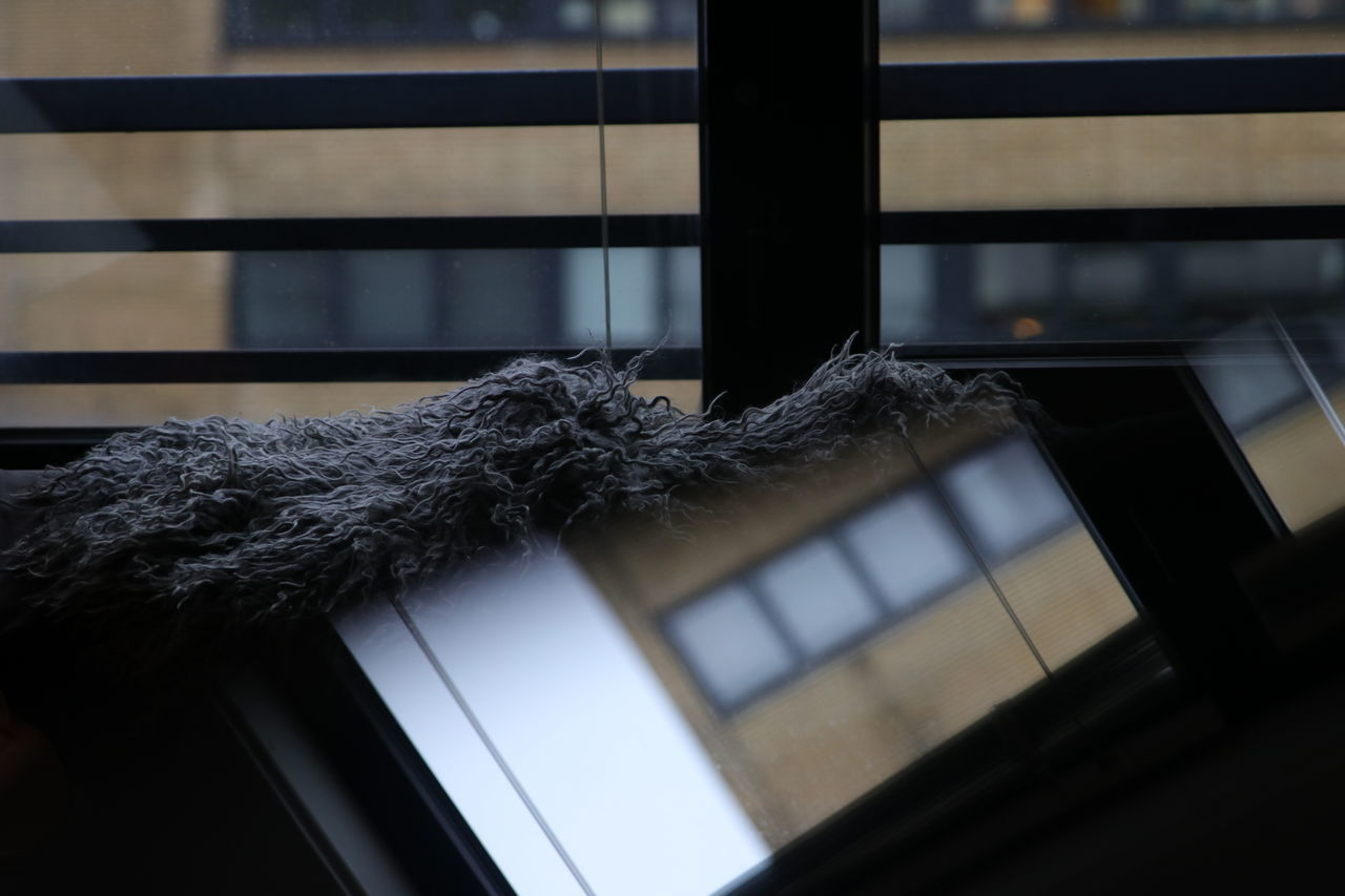 Apartment Architecture Built Structure Close-up Day Indoor Indoors  Living Room Mirror No People Reflection Reflection In The Window Reflection Photography Windows