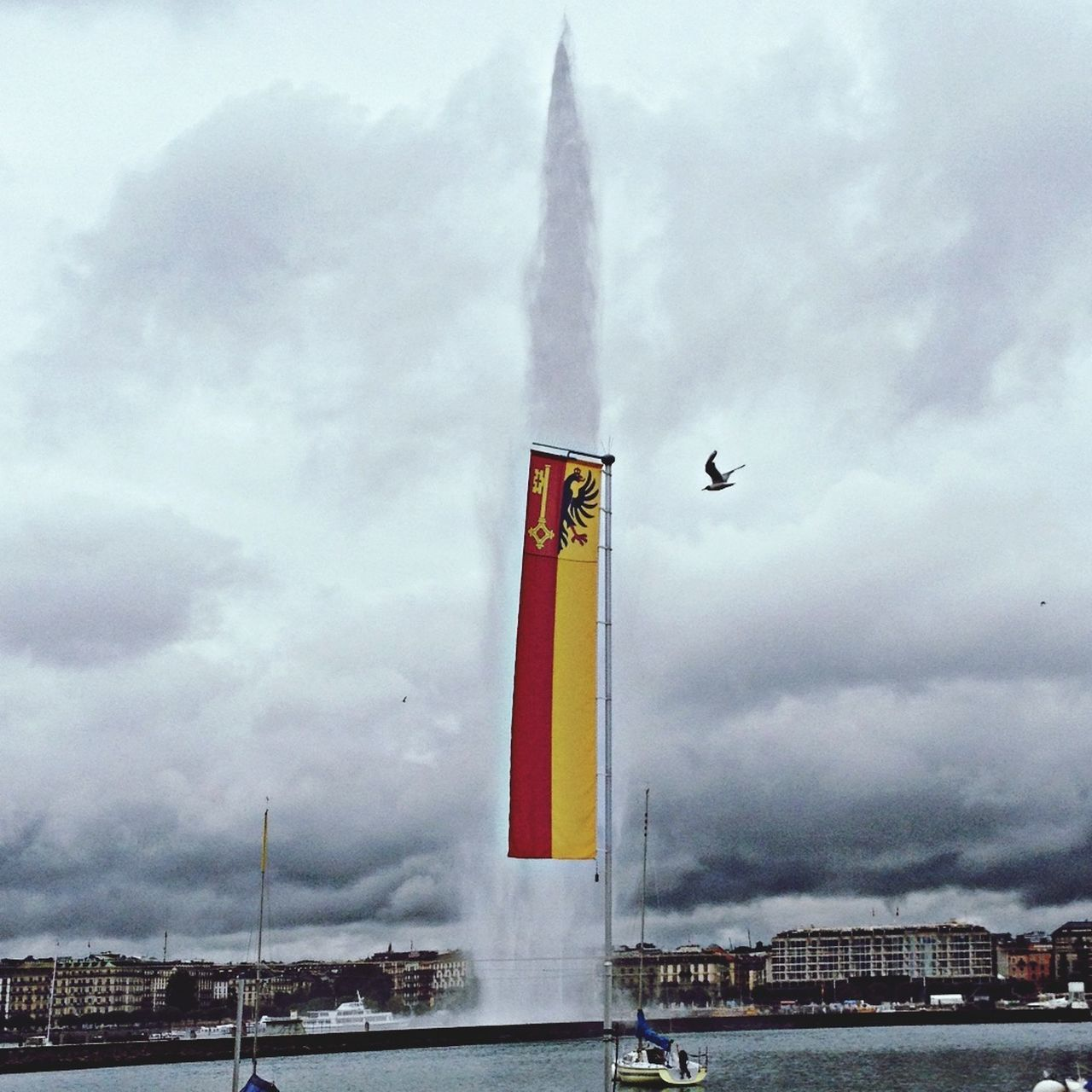 #Geneve cloudy day #seabird heading to the flag into the #jetd'eau