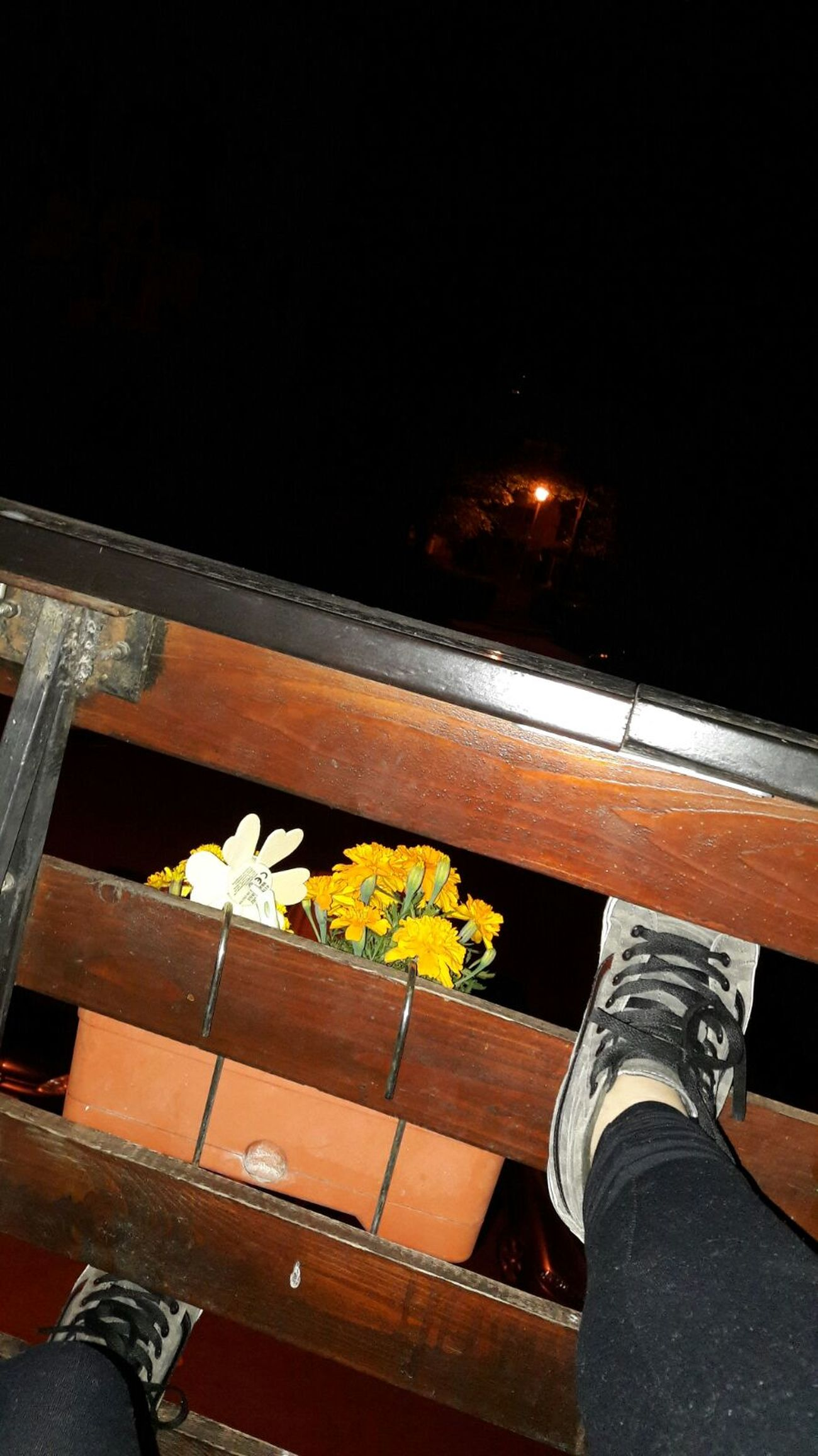 In Craiova, Romania, for a fencing contest. Night Dark Feet Flowers Relaxing Chilling ✌ No Filter