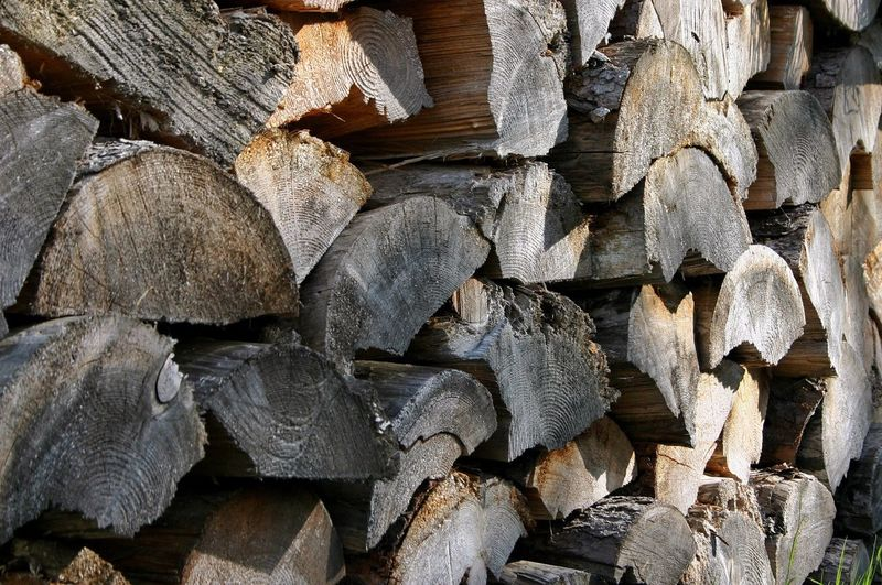 Fuel Stack Timber Log Woodpile Lumber Industry Full Frame Deforestation Textured  Fuel And Power Generation Heap Large Group Of Objects Wood - Material Backgrounds Nature No People Forestry Industry Close-up Day