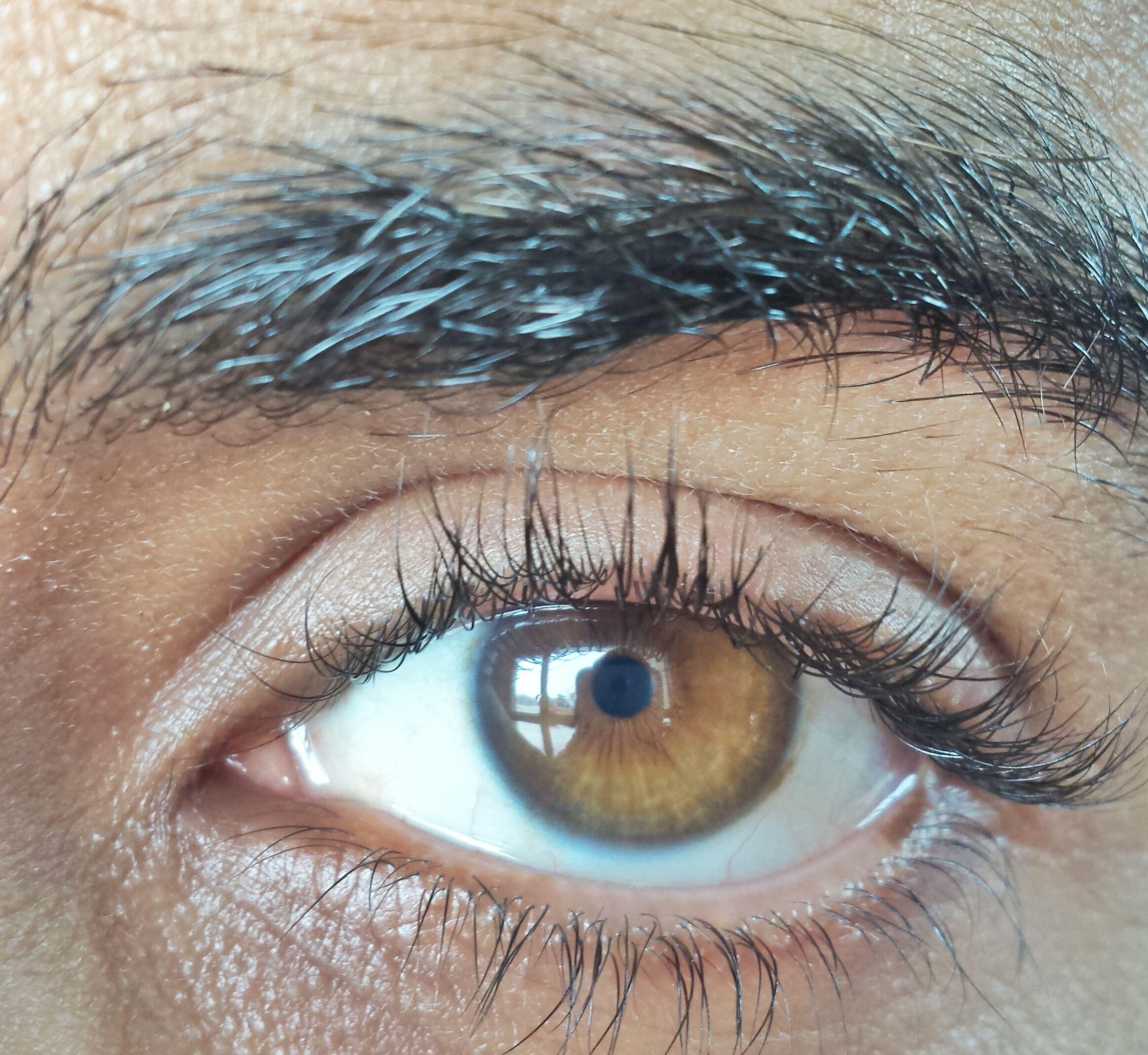 human eye, eyelash, eyesight, close-up, sensory perception, looking at camera, portrait, full frame, part of, iris - eye, human skin, extreme close-up, eyeball, human face, vision, eyebrow, extreme close up