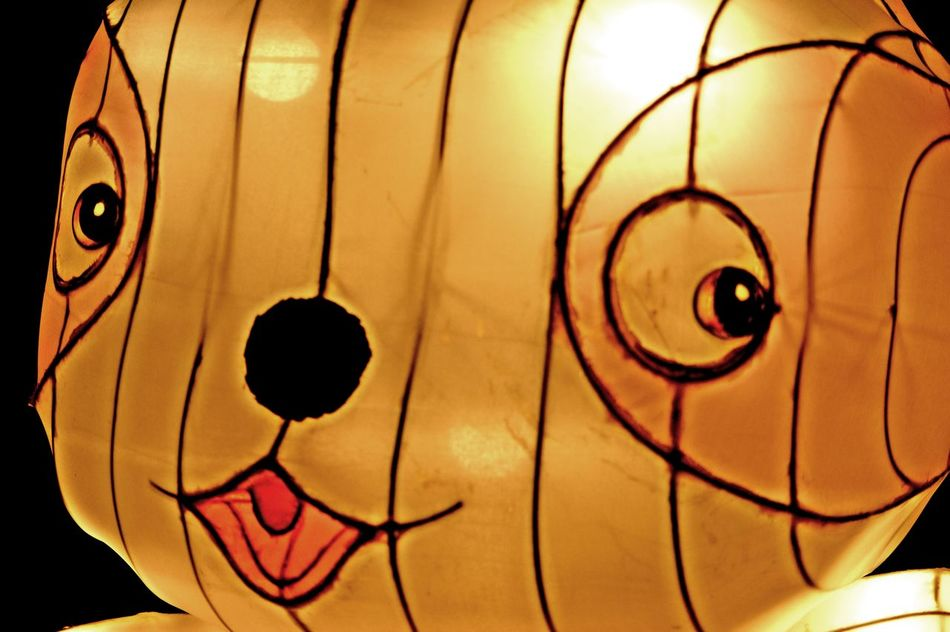 Animal Chinese Chinese Lantern Festival Close-up Illuminated No People Oi Outdoors Pan Sculture