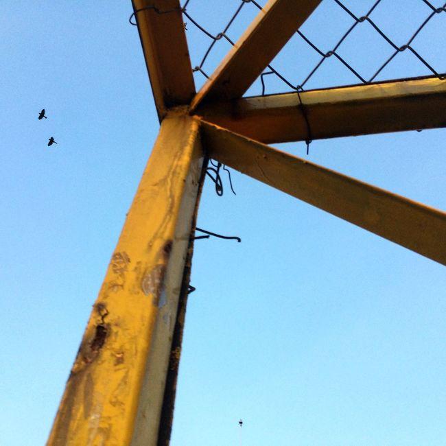 Paciencia ... EyeEm Best Shots Birds Landscape_photography