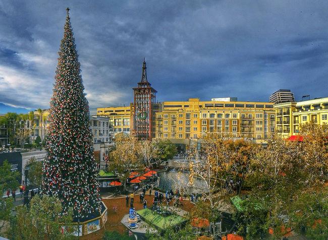 Somewhere in Glendale California California Christmas Lights Christmas Tree Chruch