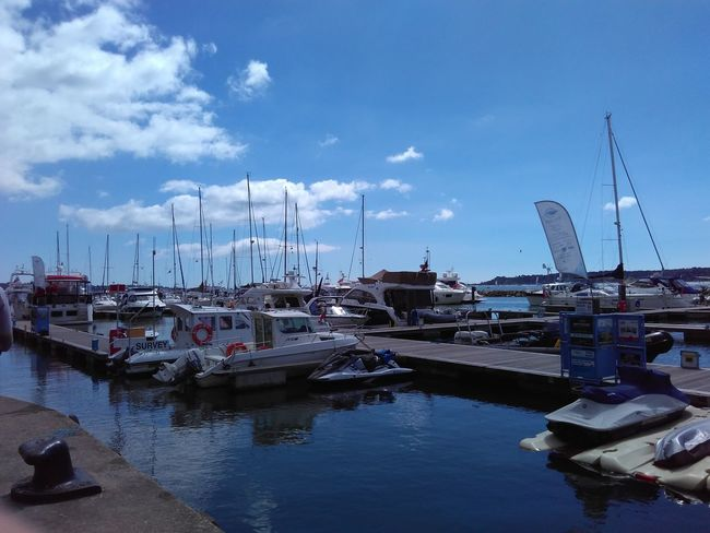 Docks Pivotal Ideas Colour Of Life
