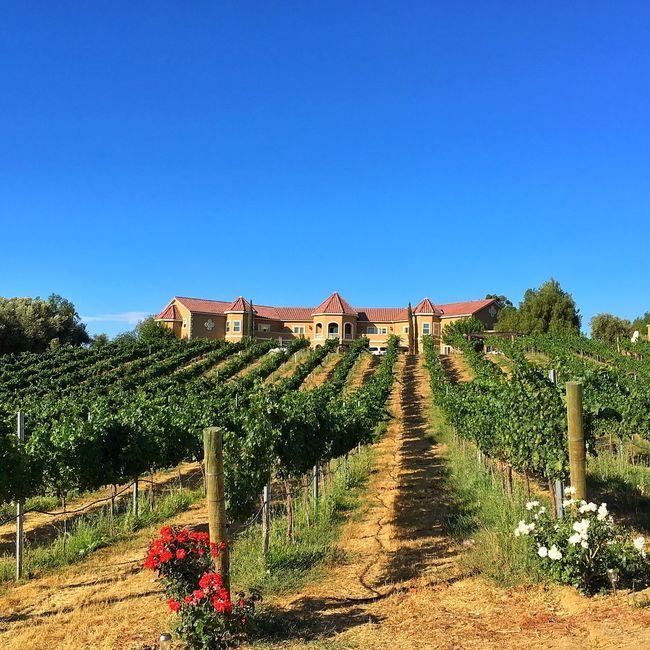 Winery Temecula California