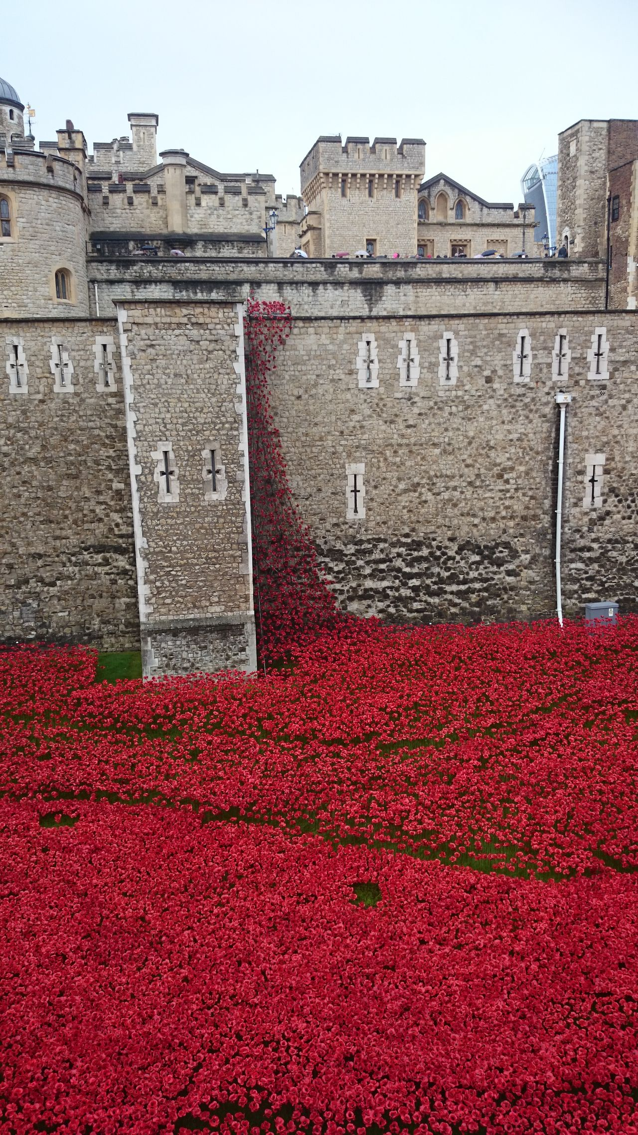 Poppies  Building Exterior No People Architecture War Memorial Sea Of Red WW1 Centenary Ww1 Memorial Lost Souls  We Shall Never Forget Lest We Forget Fallen Heroes Outdoors No People Building Exterior Architecture City Sky Water Day Built Structure Horizontal Close-up