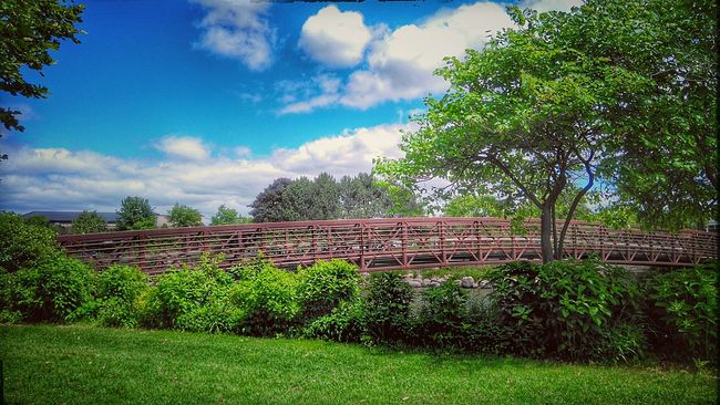 """Colour Of Life Nature Calling!! """"Sometimes, if u aren't sure about something 😕, u just have 2 jump off d bridge 🌉 & Grow ur wings 👼 on d way down !!! """" 😊😄 Pivotal Ideas Idyllic Scenery Nature Bridge Nature Photography Green Green Green!  Mobile Photography Showcase August EyeEm Nature Lover Trees Sky And Clouds Tree_collection  Bridge View Landscape_Collection Greenery HDR Nature_collection Landscape_photography Bright_and_bold Bridge Over Water Trees And Sky Wonderful Nature Calendar Pic✌ at Elgin Bridge"""
