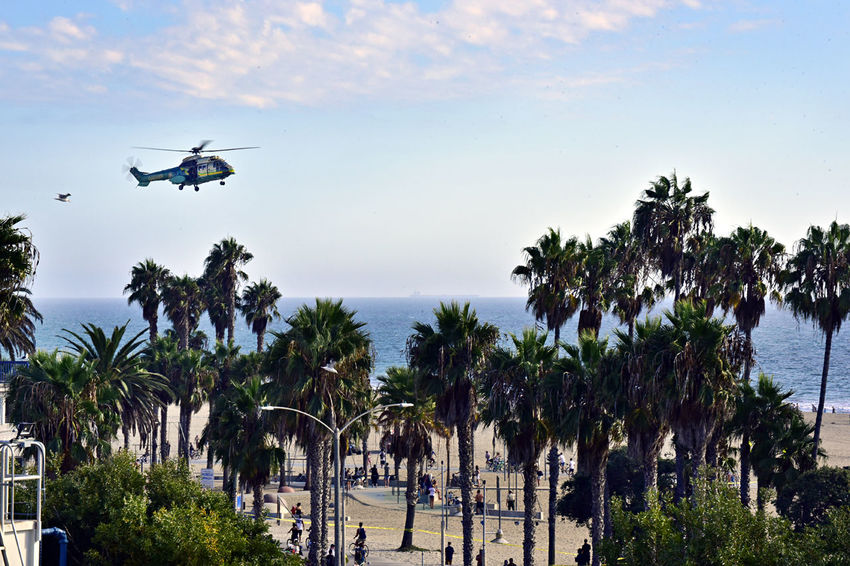 On 09/11/17, someone called in a bomb threat at the famous Santa Monica Pier. Santa Monica Police Department received assistance from the Los Angeles County Sheriff's Department Bomb Squad and Special Enforcement Bureau, which included their rescue helicopter and paramedics. Fortunately, the threat was a hoax and no one was injured. Eurocopter Helicopter Los Angeles, California Los Angeles Life Photojournalism Photojournalist Santa Monica The Week On EyeEm Beach Chopper Day Flight Flying Outdoors Police Police Helicopter Puma Rescue Rotor Blades Sheriffsdepartment Sky Swat Up In The Air