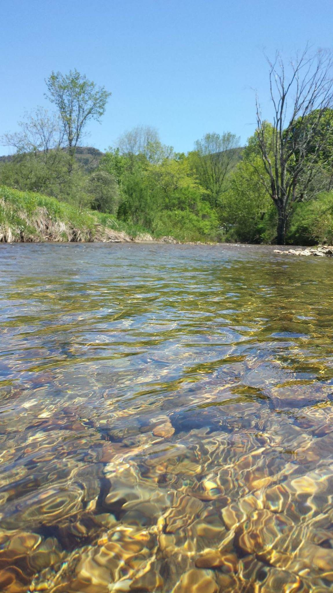Batten Kill River Water Flow Water Ripples Effect Glassy Green Mountain State