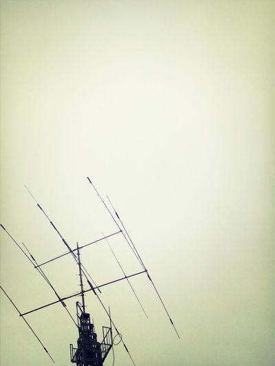 Sky Sky Porn Electric Wire Black & White