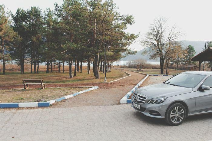 Road Mercedes