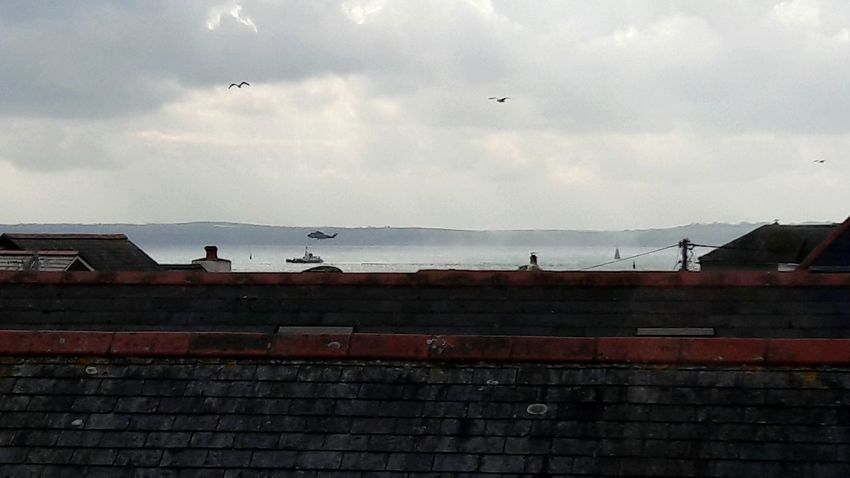 View over the rooftops England 🇬🇧 St Mawes Bird Military Flying