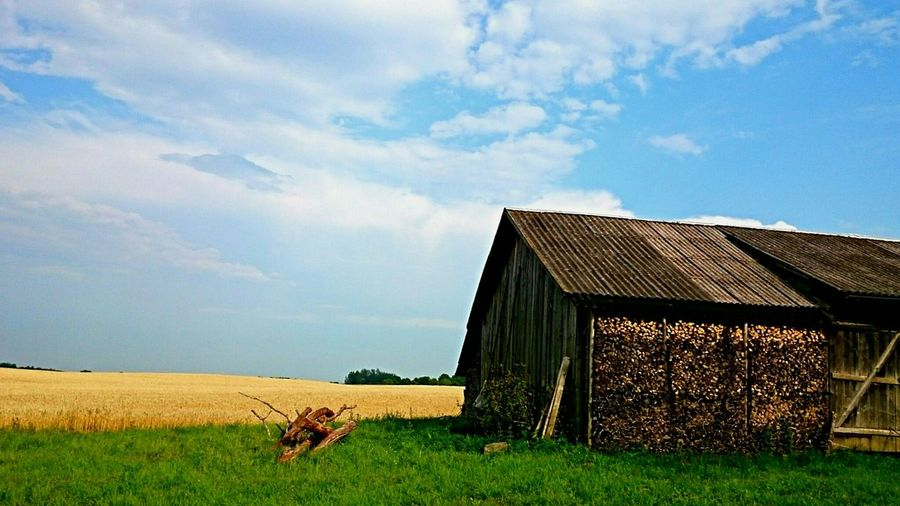 Lithuanian countryside Summertime Photography Colorful Countryside Barn Wheat Field