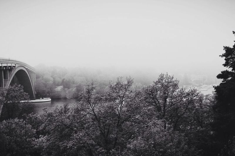 Throwback from a foggy Morning in Stockholm . Blackandwhite