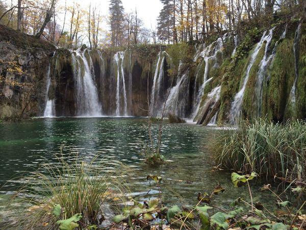 Croatia, Plitvice National Park, Jezerce, novembro/2015 Beauty In Nature Croatia Day Forest Idyllic Motion Nature No People Outdoors Plitvice National Park Scenics Tranquility Tree Water Waterfall