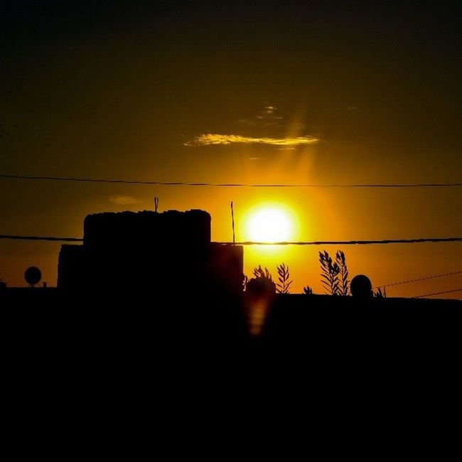 Sunset Sun Clouds Sky_masters skyviewers sky tree amman seeamman beamman spiritofjordan jordan nature jordannature discoveramman discoverjo