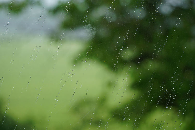 Backgrounds Beauty In Nature Close-up Freshness Full Frame Green Color No People Rain On Window Raindrops Raindrops On My Window Raining Raining On Window Wet Wet Window