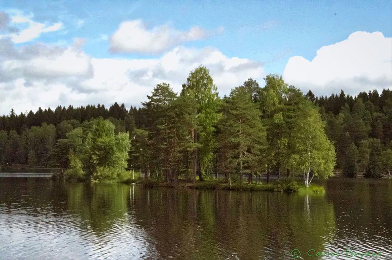 Sognsvann Lake Lago Oslo Norway IPhoneography Iphoneonly Iphone6 Iphonephotography