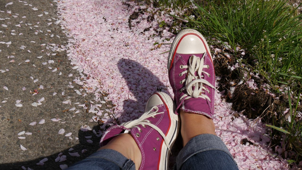sitting on petal ground Casualstyle Sunny Day Close Up To Nature EyeEm Nature Lover EyeEm Gallery EyeEm Selects Shoes Cherry Blossoms Petals Petals Of Cherry Blossoms Sitting On The Ground Pathway Harmony Of Colors Spring Low Section Human Leg Shoe Personal Perspective Human Body Part One Person Real People High Angle View Human Foot Lifestyles Leisure Activity Directly Above Outdoors Canvas Shoe Pink Color Women