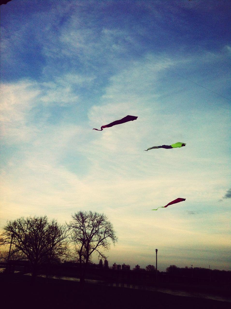 Kites Flying In Sky