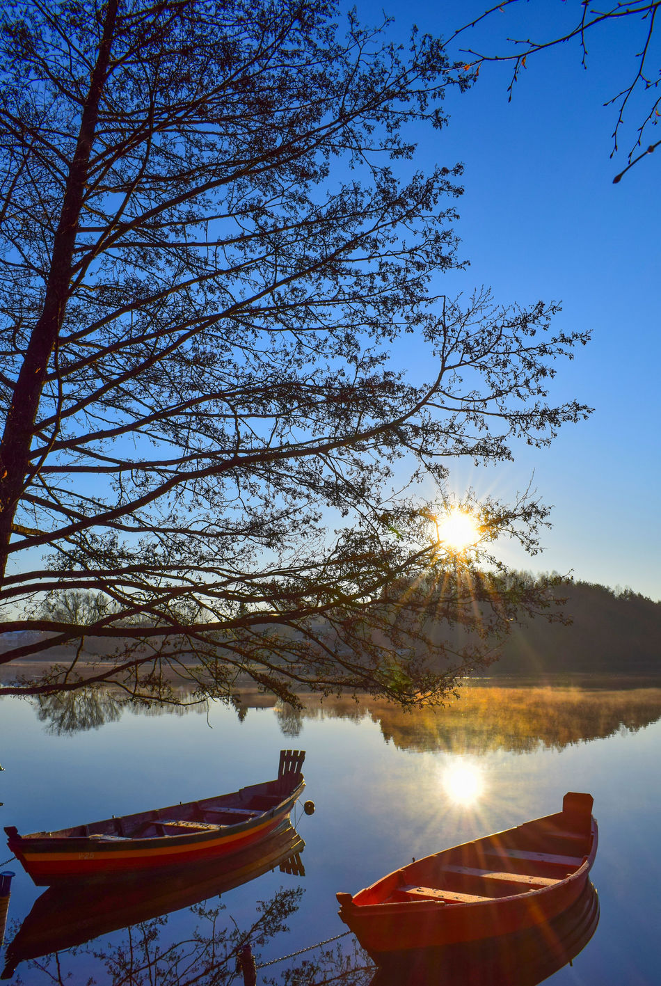 Morning View Lake Reflection Water Sky Boat Reflection Nature Tree Outdoors Tranquility Beauty In Nature Landscape Clear Sky Foggy Lake Lithuania Nature Water Transportation