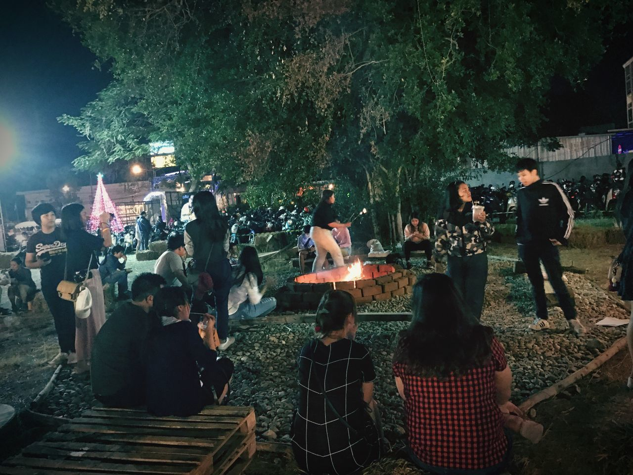 real people, women, men, large group of people, night, standing, outdoors, leisure activity, lifestyles, tree, celebration, togetherness, full length, musical instrument, nature, people