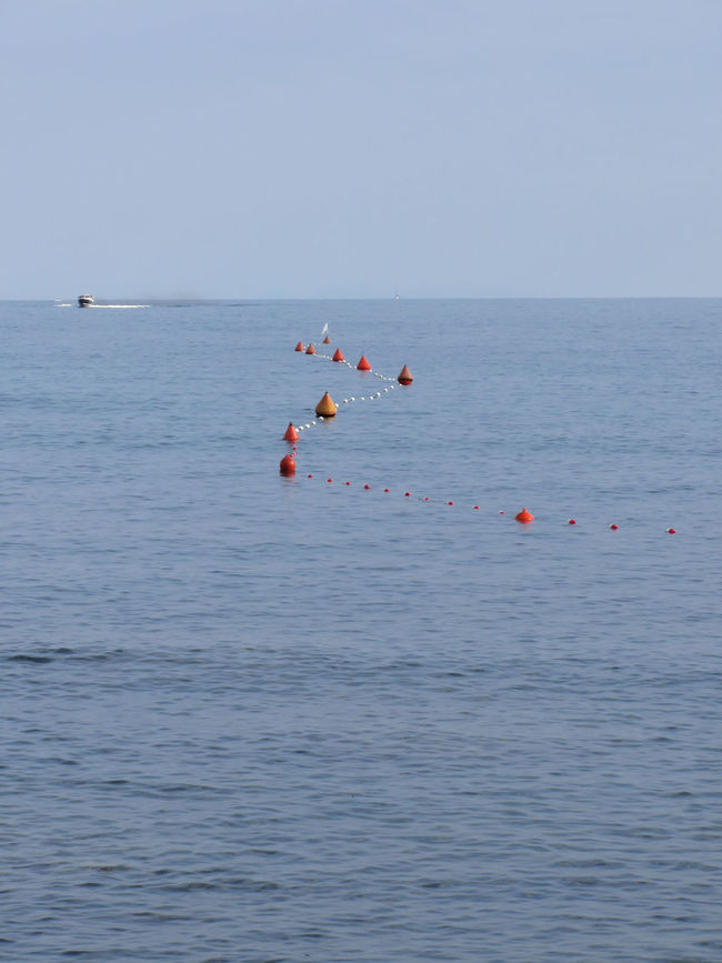 Lots of mooring buoys floating on water in marina. Small boat visible at the top of image. Calm water with small waves Anchor Boat Buoy Calm Coast Dock Float Free Keel Marina Marine Maritime Marker Mooring Nautical Nobody Pier Port Sea Ship Summer Tourism Visibility Visible Wave