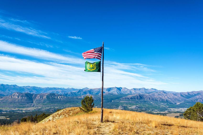 American and Forest Service flags flying above a dramatic mountainous landscape near Yellowstone National Park in Wyoming, USA Alpine Bear Montana National Park Scenic Shoshone Travel Tundra USA Wanderlust Wyoming Beartooth Destination Flag Forest Landscape Lodge Mountain Overlook Peaks Range Shoshone National Forest Tooth Valley Wilderness