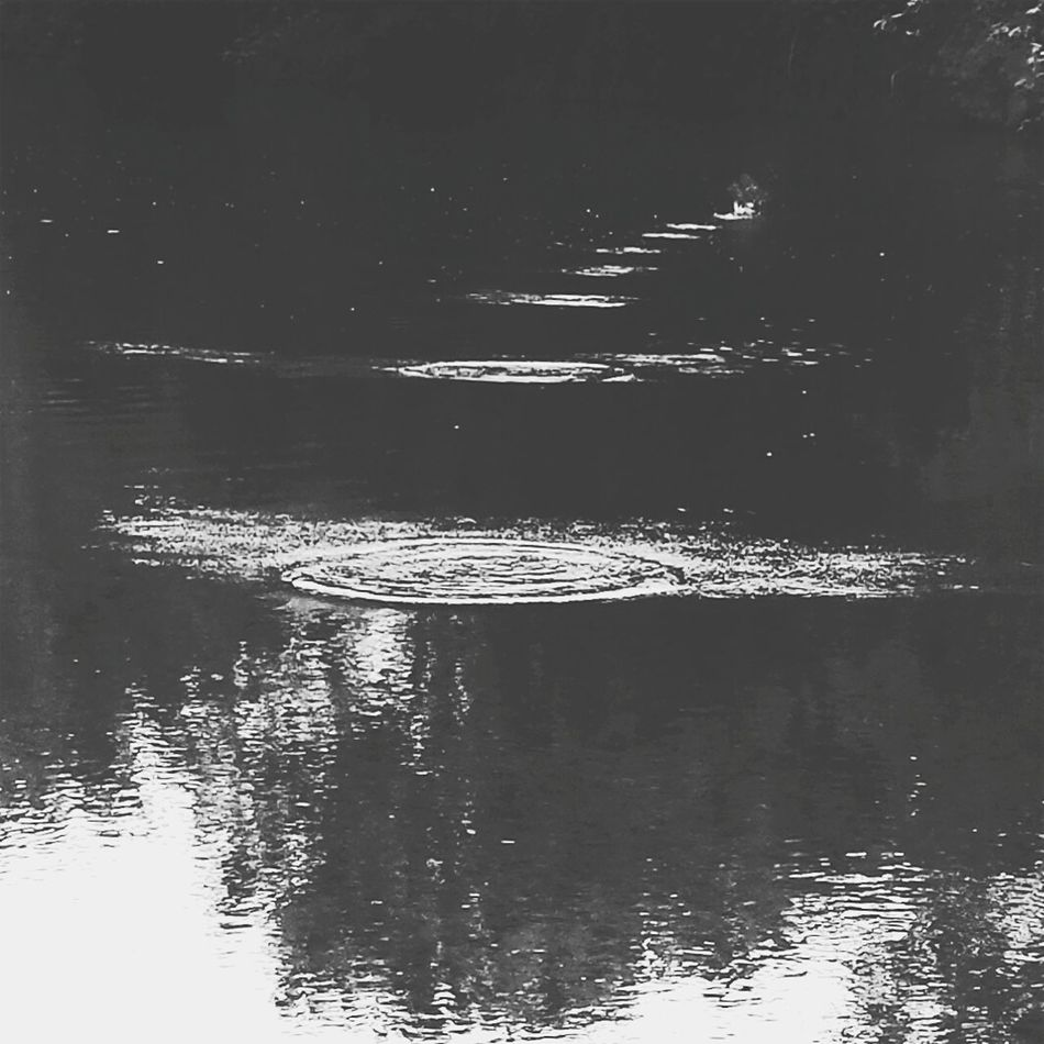 Reflection Water Nature No People Beauty In Nature Outdoors Nature_collection Naturephotography High Contrast Skipping Stones Skippingrocks Bnw_captures Bnw_life Bnw_society Bnwphotography Blackandwhite Photography