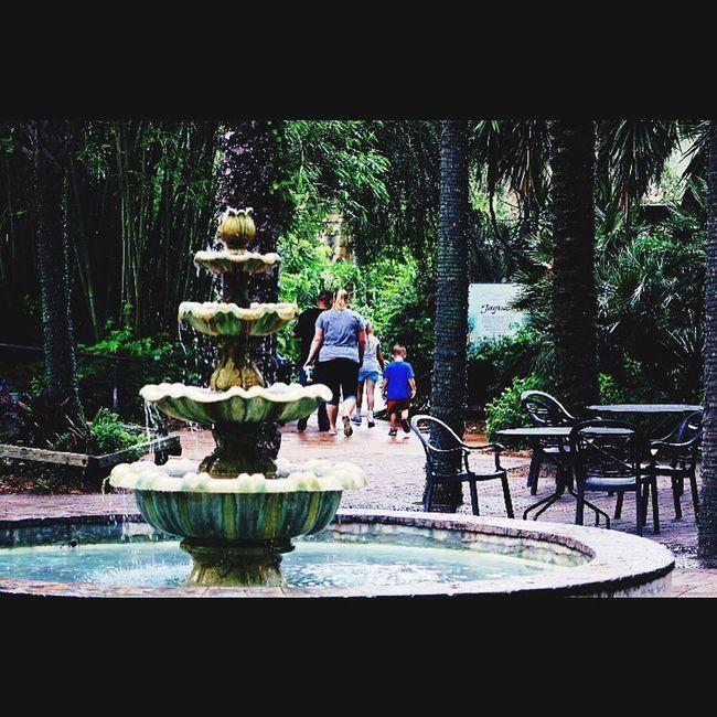Fountain Portrait Jacksonville JacksonvilleFL