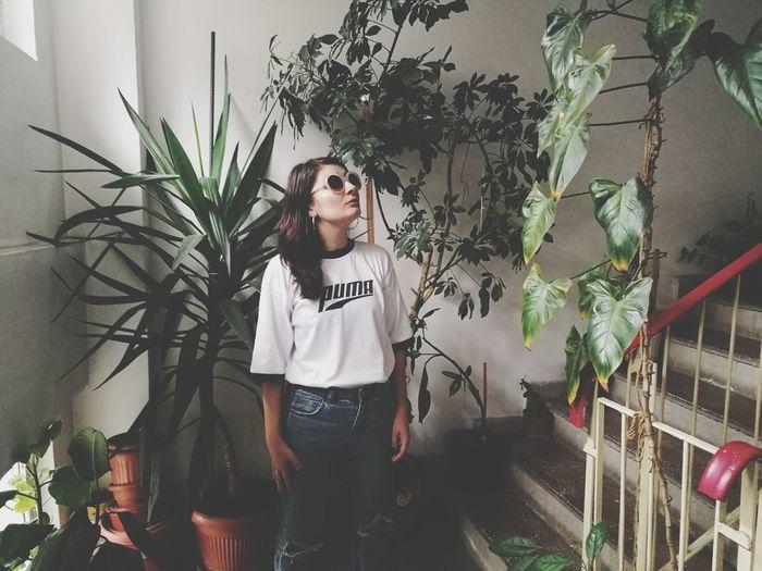 Plant Portrait Greenhouse