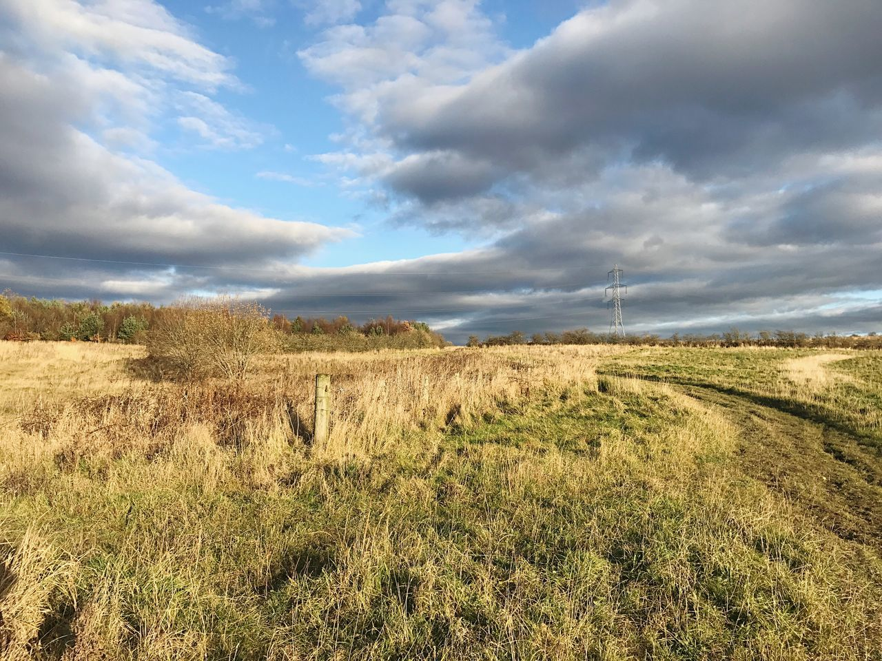 field, landscape, cloud - sky, sky, tranquil scene, nature, grass, tranquility, beauty in nature, scenics, day, no people, outdoors, growth