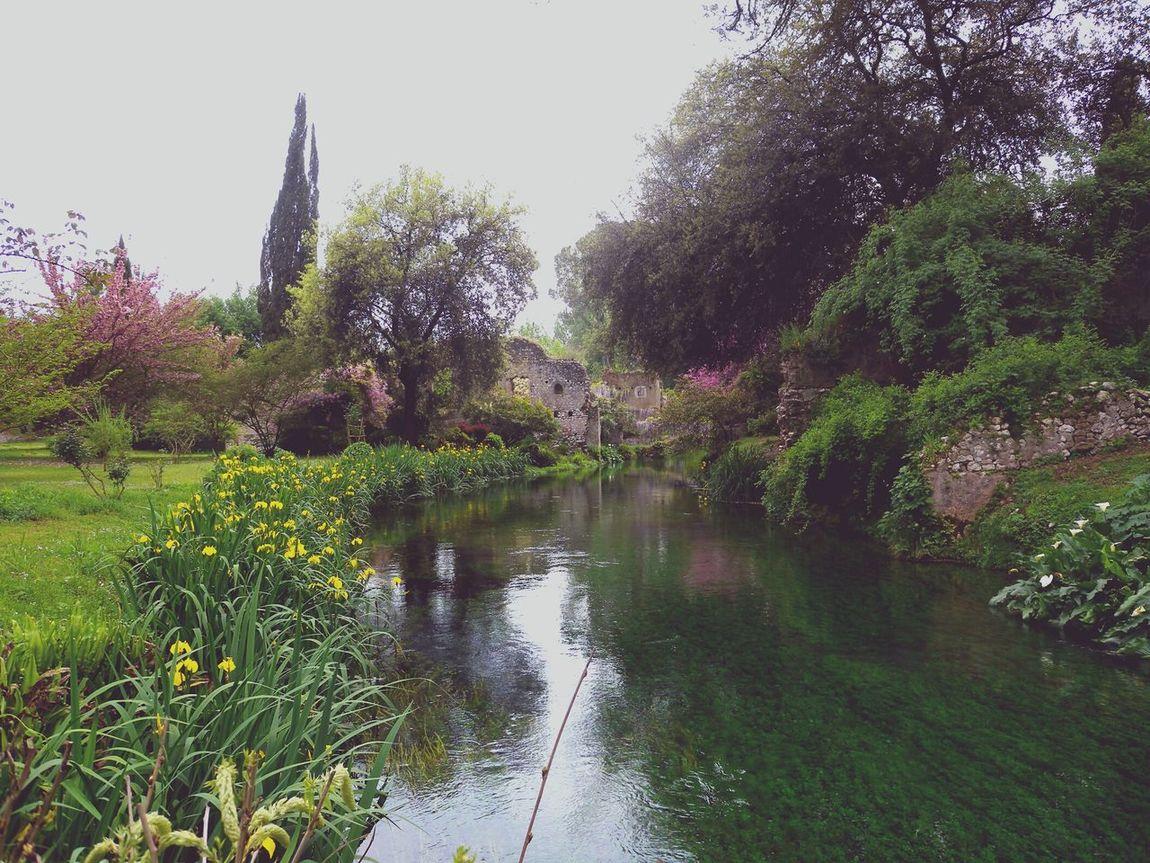 Ninfa Sunday Afternoon Amazing Places EyeEm Italy Wanderlust Spring River Enjoying Life Botanical Gardens English Garden